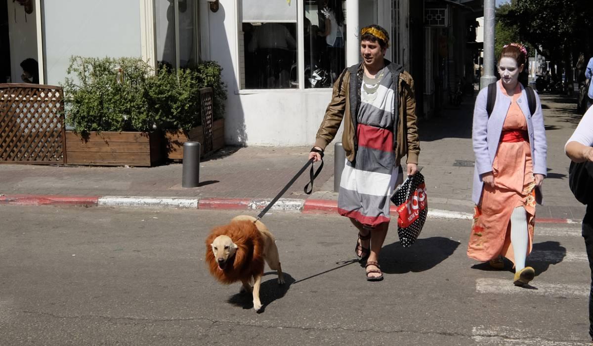 Pourim. Les chiens deviennent lions à Tel-Aviv. ©Judith Lossmann, Carnaval à Tel-Aviv... prenez vos billets et en route pour la fête !