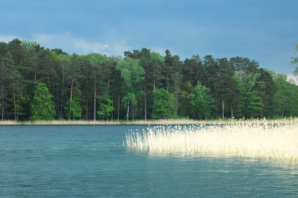 lituanie trakai lac 2580
