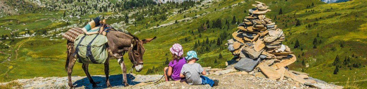 Randonnée avec un âne, la déconnexion parfaite !