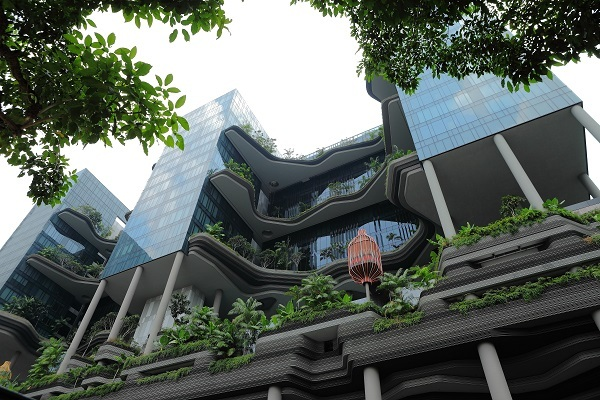 singapour espacevert cdt