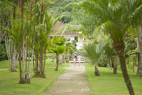 martinique jardins