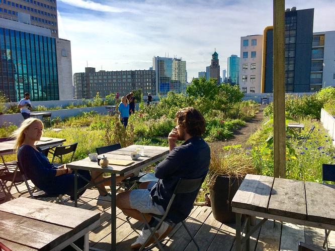 Manger sur les rooftops à Rotterdam ©JL